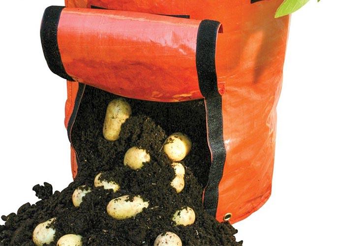 Картофель в мешках - сбор урожая