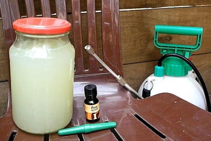Раствор молока с йодом
