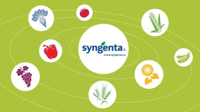 Гербициды сплошного действия Syngenta®