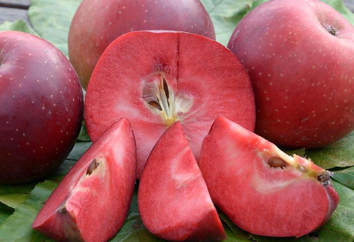 Яблоки Байя Мариса