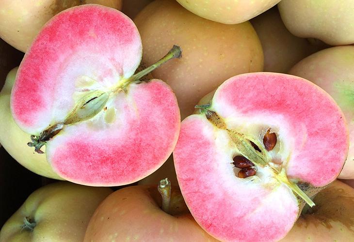 Яблоки Пинк Перл
