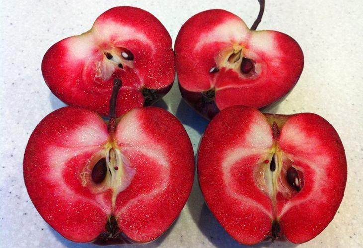 Яблоки Ред Пешн