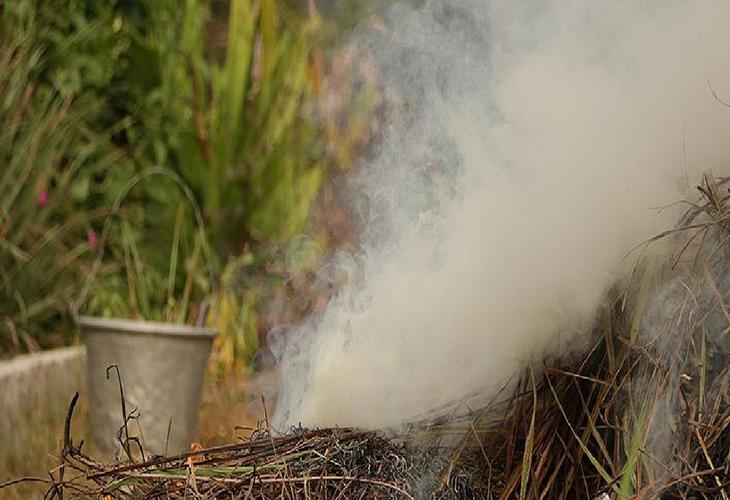 Окуривание дымом