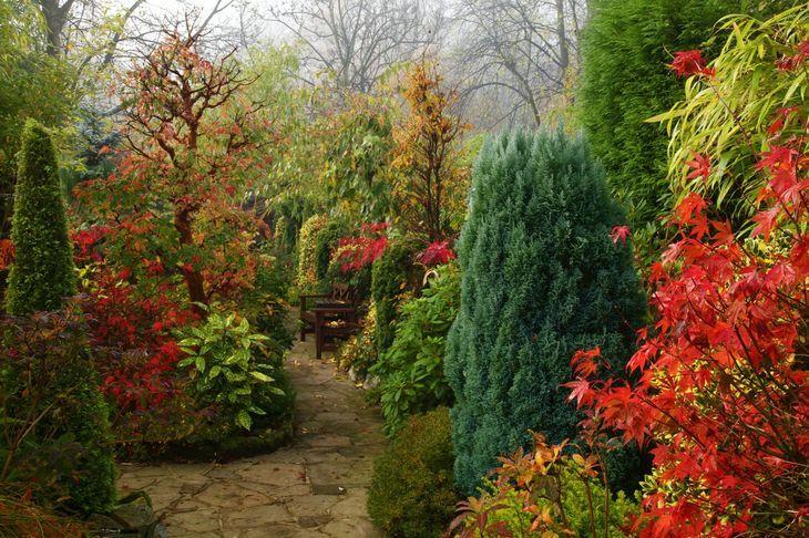 Удобрение сада осенью
