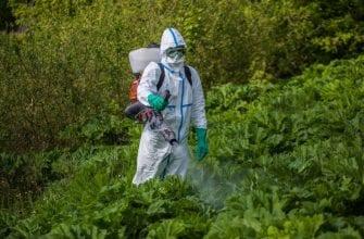 Обработка огорода гербицидами