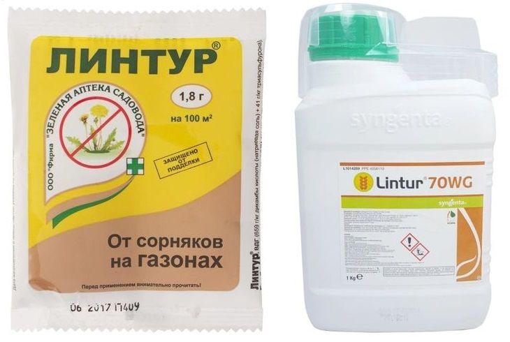 Линтур