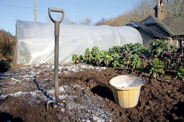 Внесение извести в почву