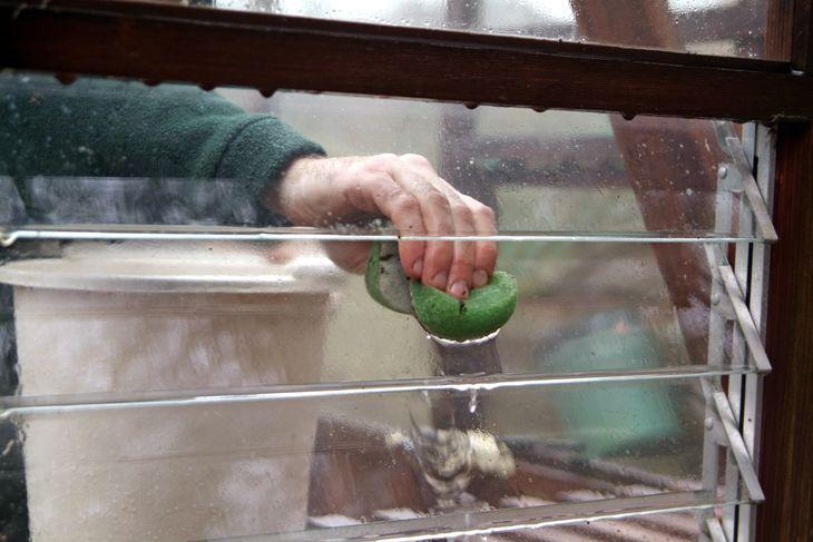 Мытье теплицы из поликарбоната