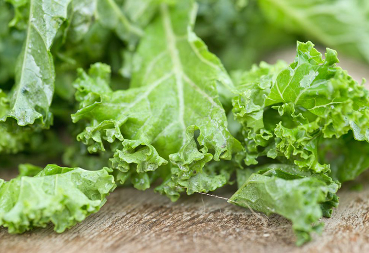 Заморозка салата целыми листьями