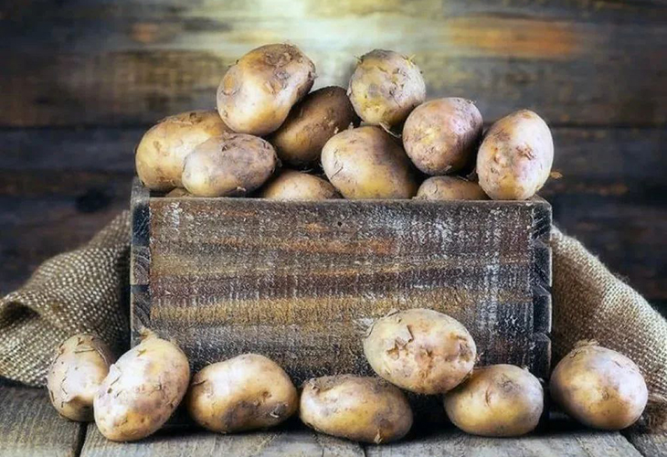 Картофель поздних сортов