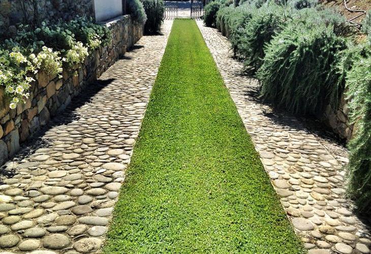 Садовые дорожки из травы
