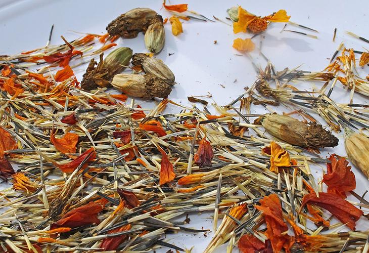 Сушка семян