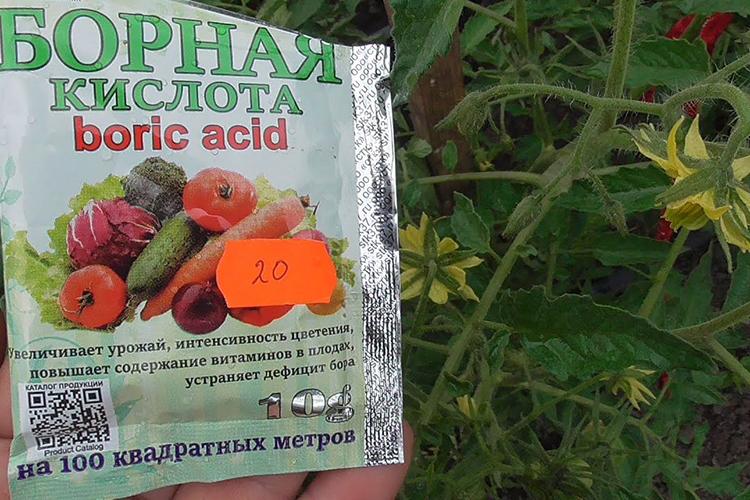Борная кислота для инициации цветения
