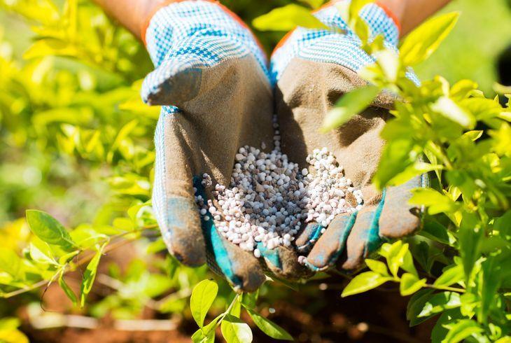 Хелаты для растений
