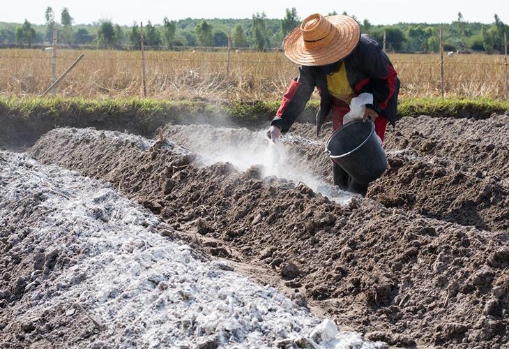 Подщелачивание почвы