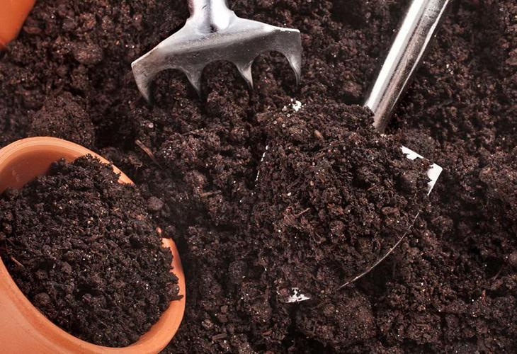 Собираем землю для рассады
