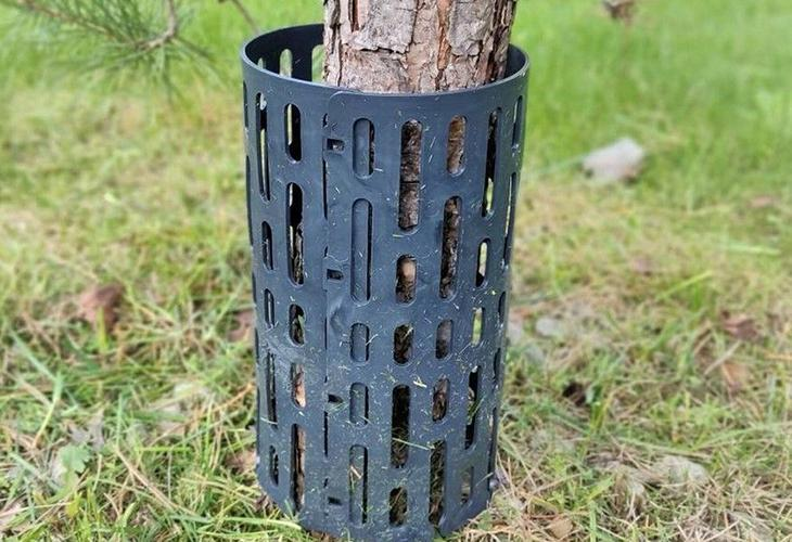 Защита деревьев от грызунов