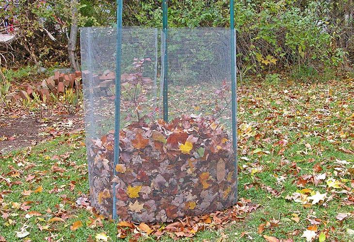 Утепление растений опавшей листвой