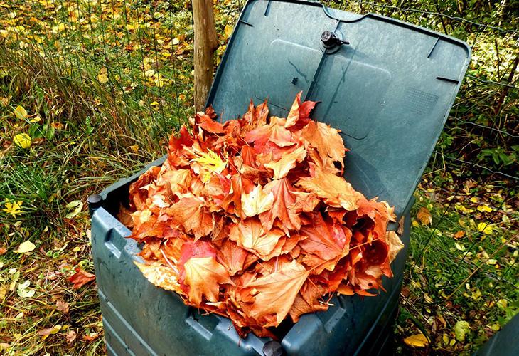 Укрывной материал из опавшей листвы