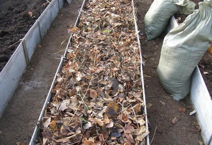 Опавшая листва в теплых грядках