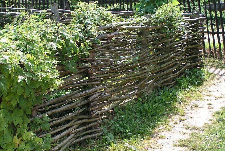 Забор-плетень