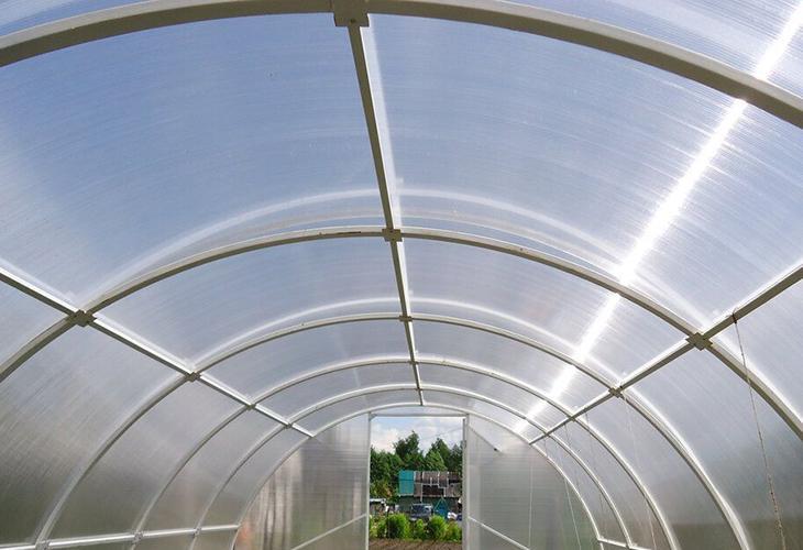 Крыша в теплице из поликарбоната