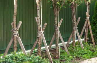 Подпорки для деревьев