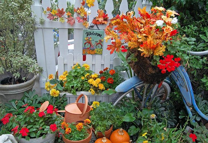 Работа в цветнике осенью