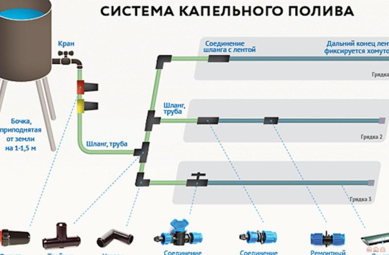 Схема капельного полива, как сделать трубы разводки воды
