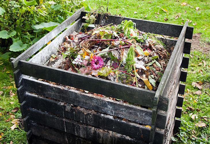 Полив компоста