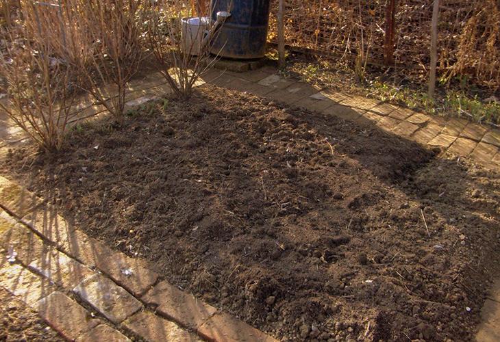 Почва для малины