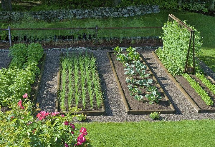 Ленивый огород