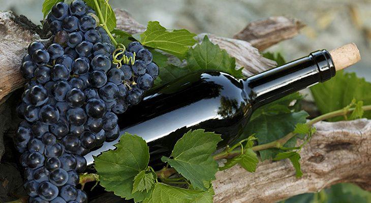Винные сорта красного винограда