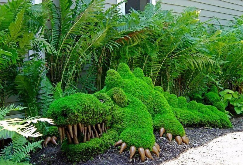Высокие многолетние растения для тенистого сада