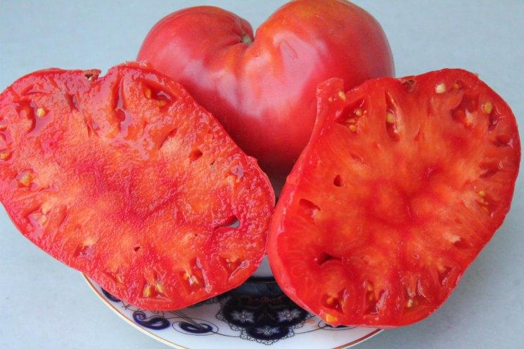 Томат Бычье сердце — описание и характеристики высокоурожайного сорта