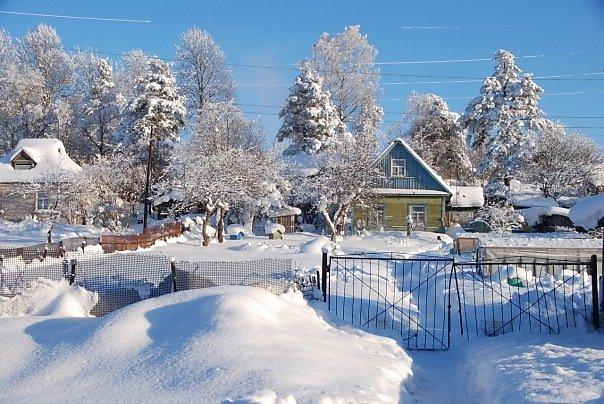 Подготовка к началу весеннего сезона на даче: зимние хлопоты садоводов
