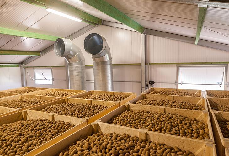 Хранение картофеля в контейнерах