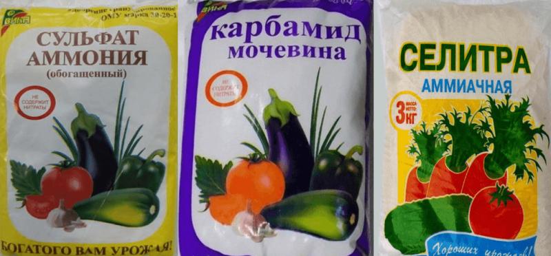 Применение мочевины в саду и огороде как удобрение