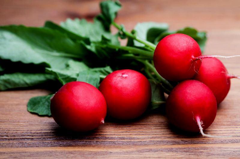 Лучшие сорта редиса для выращивания в теплицах