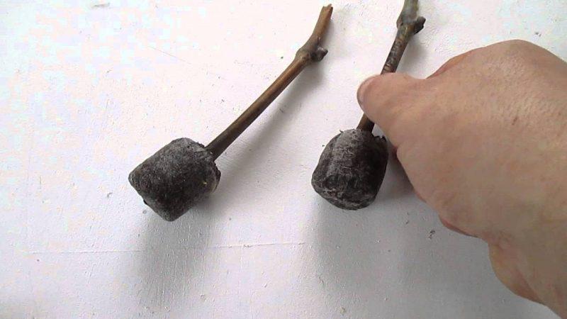 Торфяные таблетки для рассады: как правильно использовать