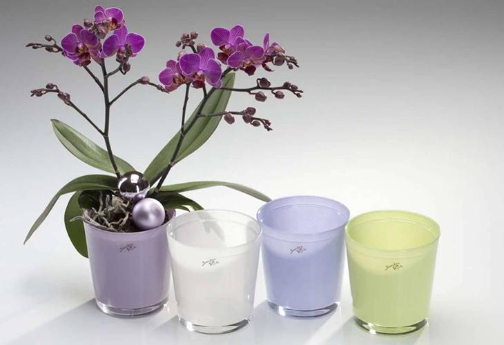 Емкость для орхидей
