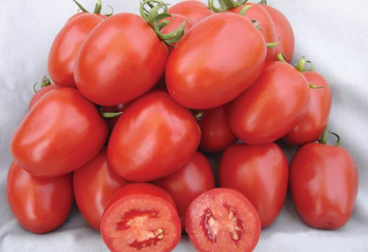 Характеристики томата Рио Гранде